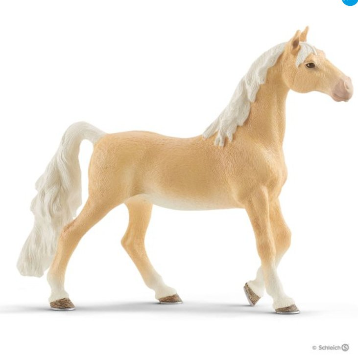 amerikaanse saddlebred merrie 13912