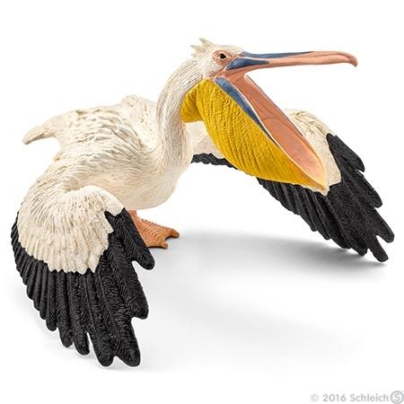 zzz pelikaan 14752