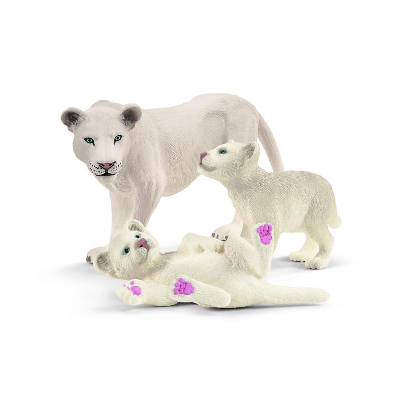 leeuwin met pups 42505