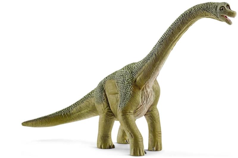 brachiosaurus 14581