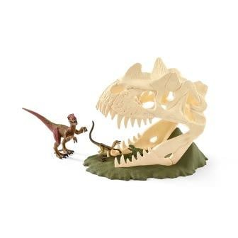 schedel  met dino's 42348