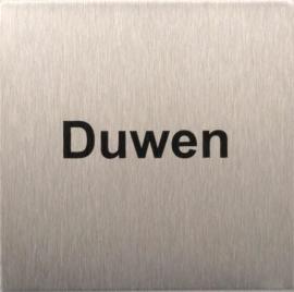 RP41 RVS Pictogram Duwen 80x80mm