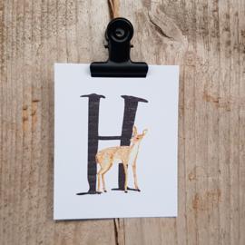 H van Hert - Letterkaartje