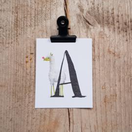 A van Alpaca - Letterkaartje