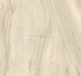 Castelvetro More - Bianco