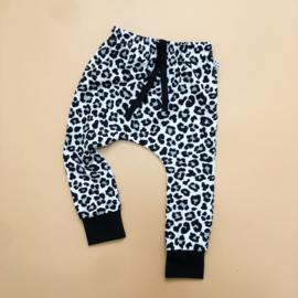 Leopard Harem