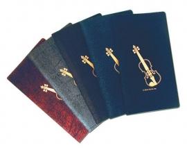 Handig notitieboekje met viool