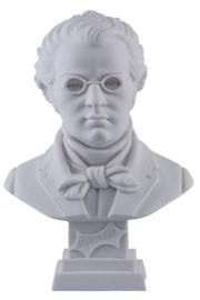 Borstbeeld Schubert