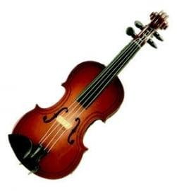 3D magneet met viool