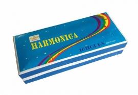 Mondharmonica groot (2x16 holes)