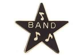 Speldje ster award Band zwart
