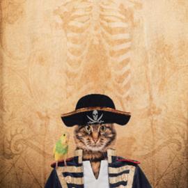 Zeerover kat (paneel)