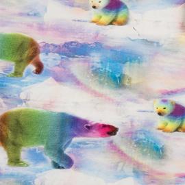 Regenboog ijsberen