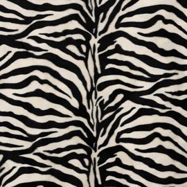 CARNAVAL / Zebra