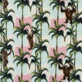 Palmbomen met apen