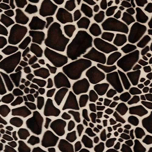 CARNAVAL / Giraffe