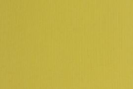 Lemon 3937