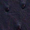 Kussen skins struisvogel zwart