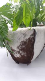 bloempot koeienhuid bruin witrik Bruin witte rug