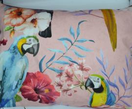 Kussen papegaaien groot 50 x 70 cm