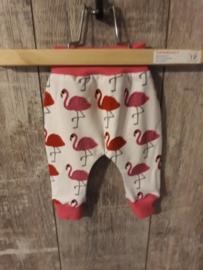 Flamingo roze-rood
