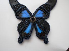 Burlesque Butterfly