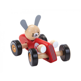 Rabbit Racing Car Plan Toys