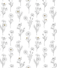 Wallpaper Seamless Pattern with Chamomile Flowers White Background Lilipinso