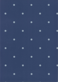Behang Kinderkamer Dots Blauw/Grijs Fabs World