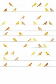 Inke XL Muurprints Behang Kinderkamer Vogeltjes Geel/Oranje