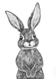 Poster Kinderkamer Black Bunny  A3 Formaat