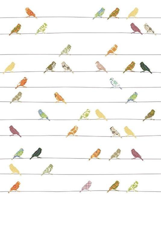 Vogeltjes Behang Lief.Inke Xl Muurprints Behang Kinderkamer Vogeltjes Bont