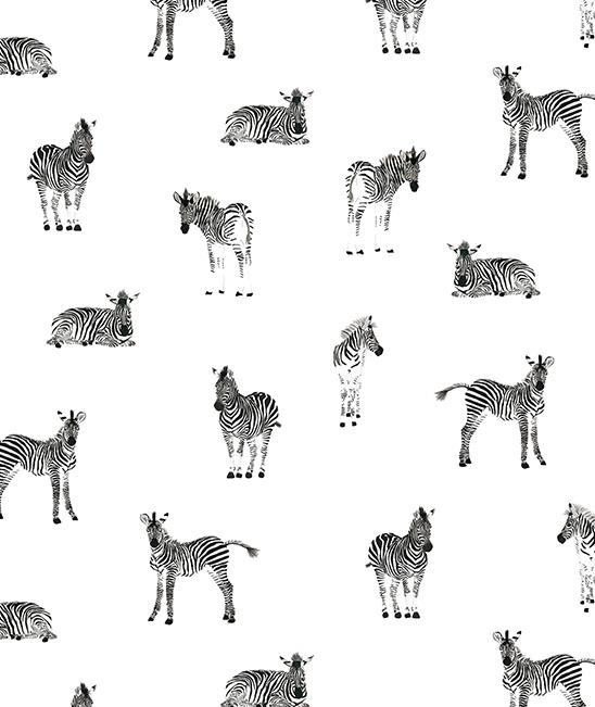 Wallpaper Monochrome Zebra Lilipinso