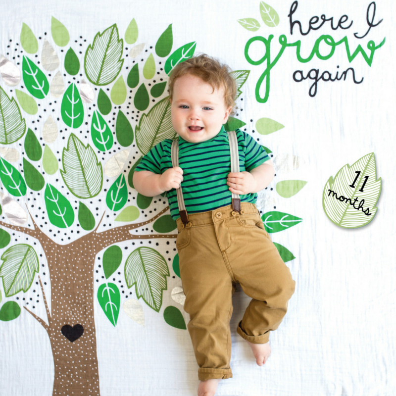 "Lulujo swaddle & cards ""Here I grow again"""