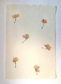 Gambi papier met bloemenmix, A4, 160 gr.