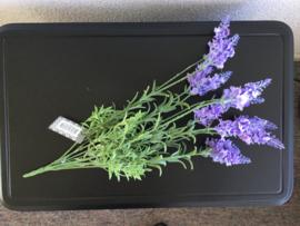 Bosje kunstbloemen lavendel