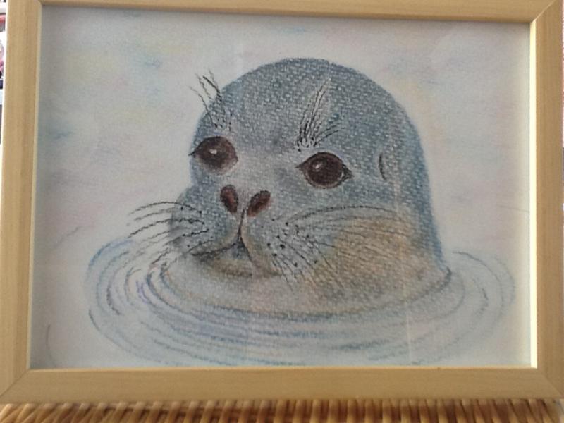 Zeehond getekend met pastelpotlood