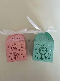 "Giftbox ""Giraffe It's A Girl"" Roze"