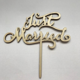 "Taart Topper ""Just Married"" Hout"