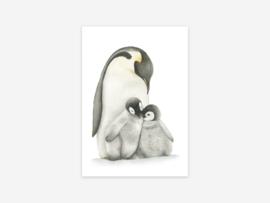 Kaart Pinguin met kuikens