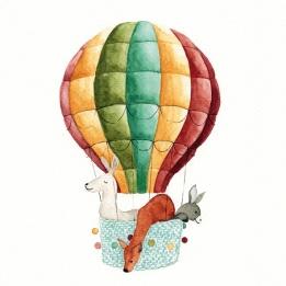 Kaart Luchtballon
