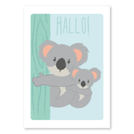 Ansichtkaart Koala familie