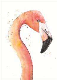 Kaart Flamingo