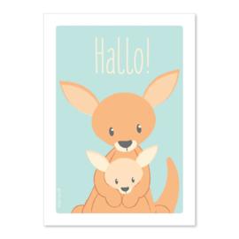 Ansichtkaart Kangaroe Hallo!