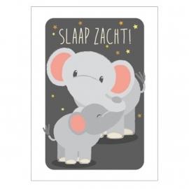 Ansichtkaart olifant Slaap zacht