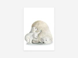 Kaart IJsbeer met jongen