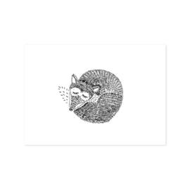 Ansichtkaart Opgerold vosje
