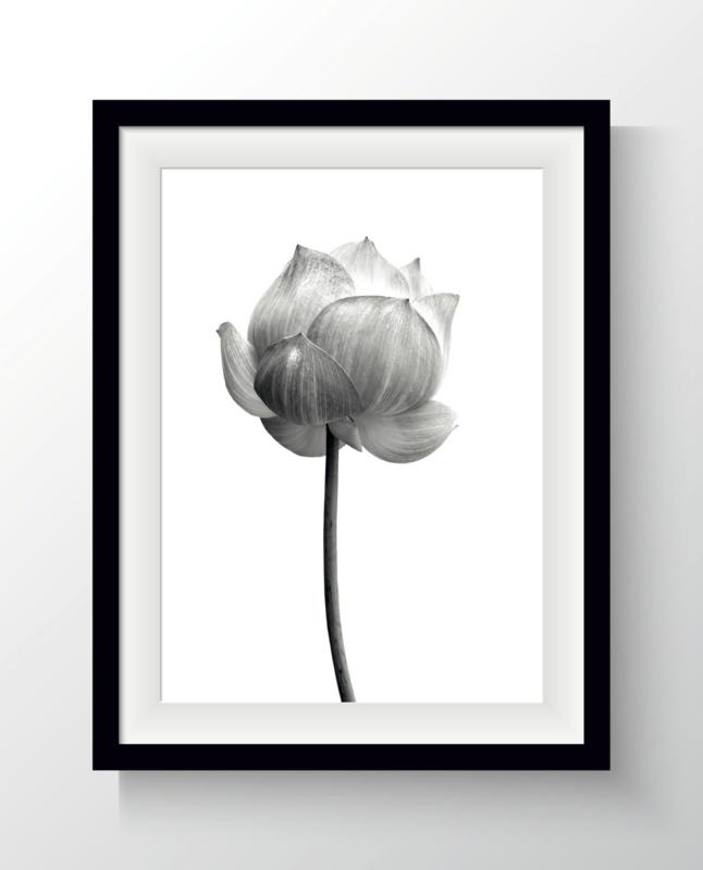 Kaart Lotus bloem