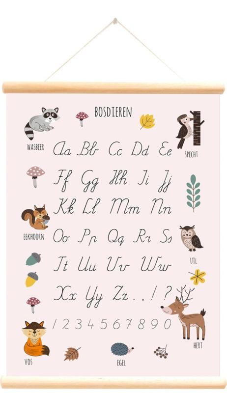 Schoolplaat Bosdieren Alfabet - roze