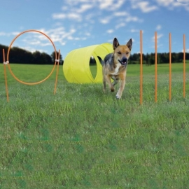 ZipZoom Agility Kit Outdoor